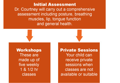 Healthy Breathing Healthy Child program structure
